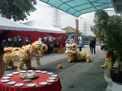 Lion Dance Performance Photo 3 at HOE Pharmaceuticals